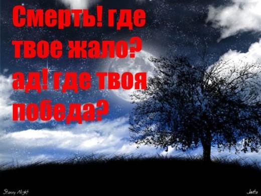 x_f7343783